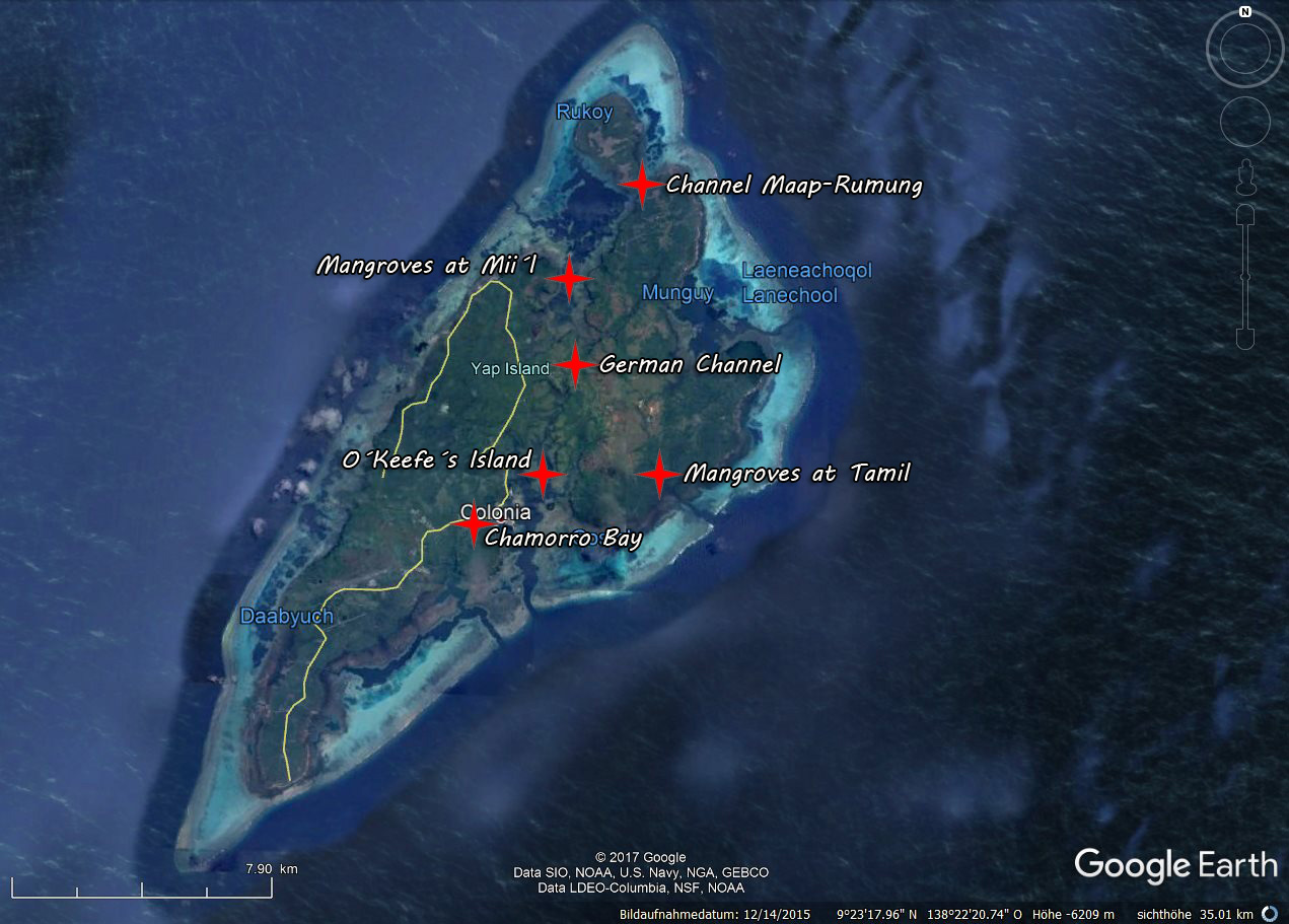Yap Island - mangrove sites