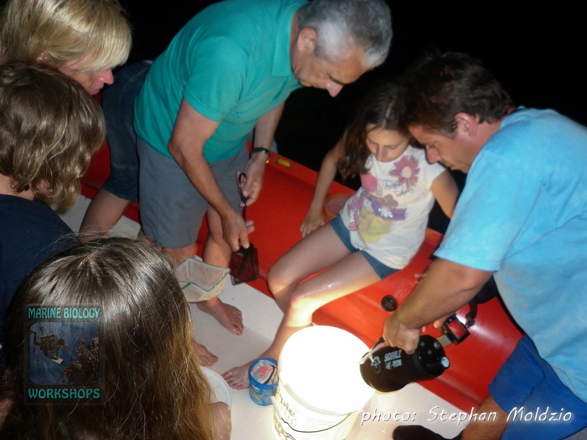 Plankton sampling P1000916