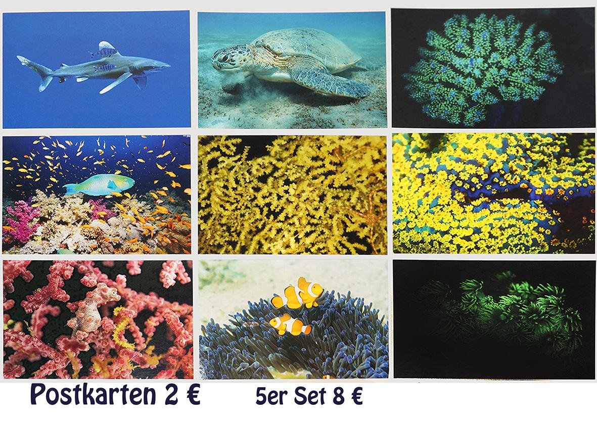 Fotoraster Postkarten 3x3 quer