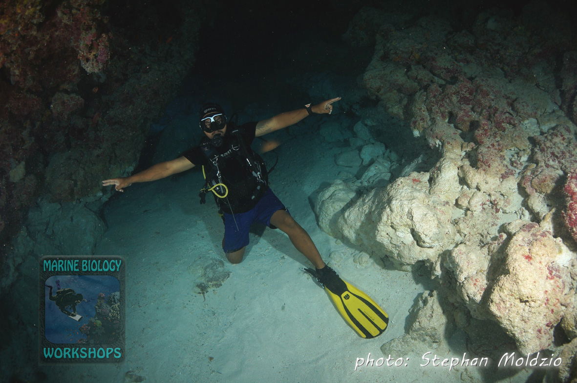 "Yap Divers guide Brian at ""Yap Caverns"""