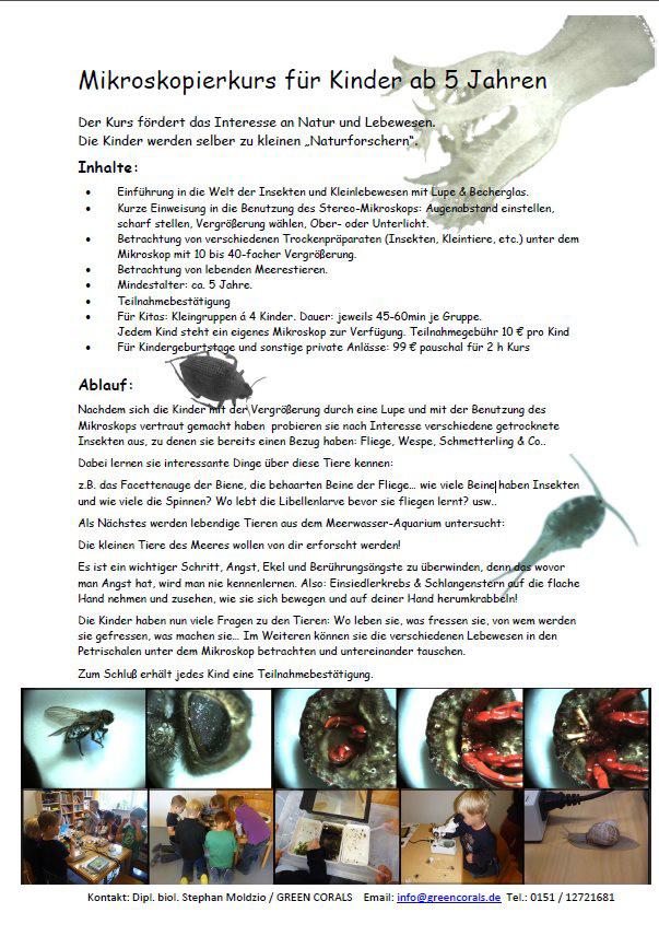 Flyer Mikroskopierkurs