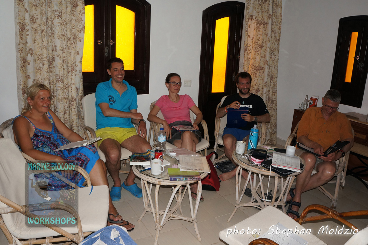 Reef Check EcoDiver course - theory sessions
