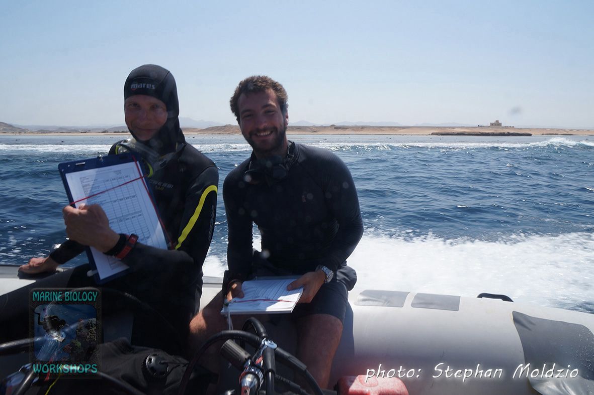 Survey Marsa Egla - Rainer & Eric
