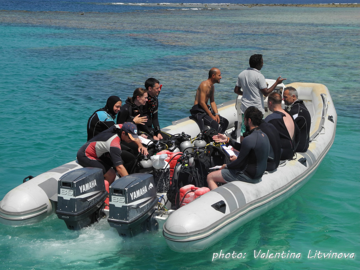 Ready for the Reef Check Survey at Marsa Egla!