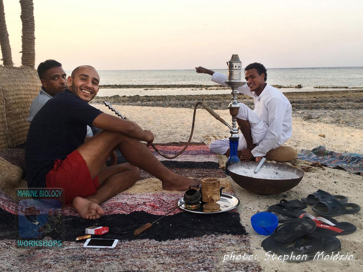 Best Shisha at Bawadi Bedouin Café