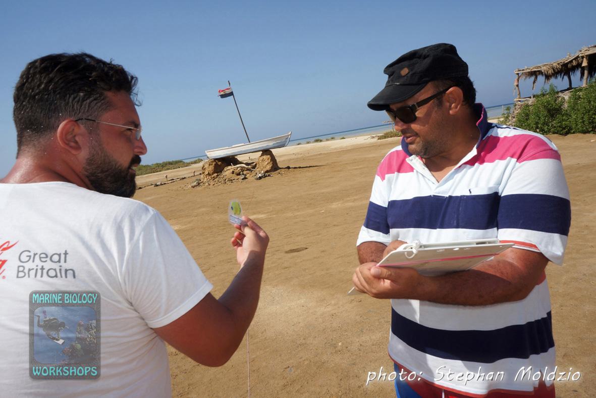 Abdelrahman & Abdallah