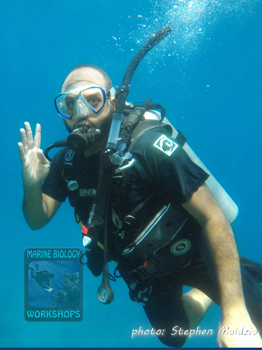 UW sign for grouper