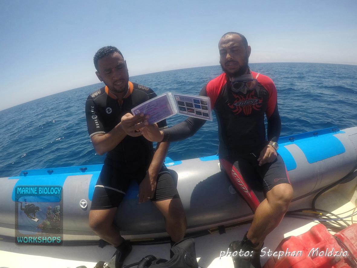 Khalid & Ayman