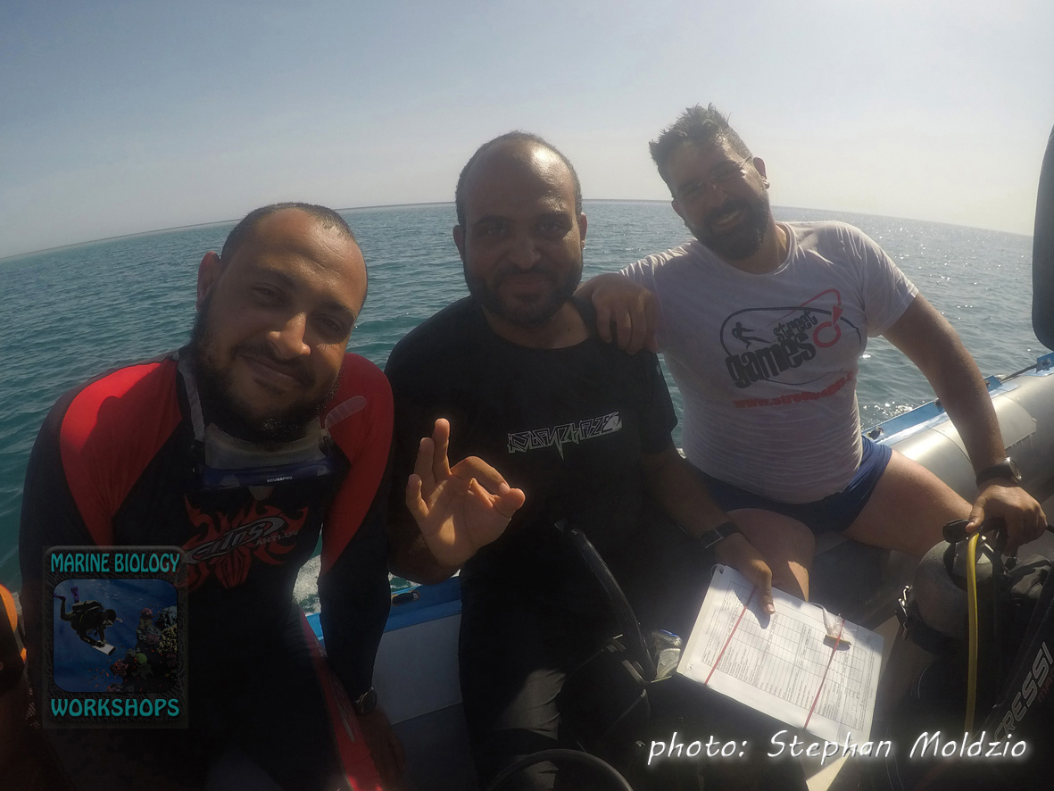 Ayman, Mahmmoud, Abdelrahman