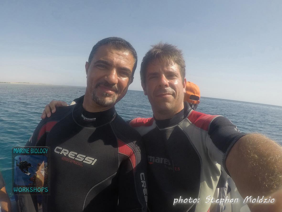 Ahmed & Stephan