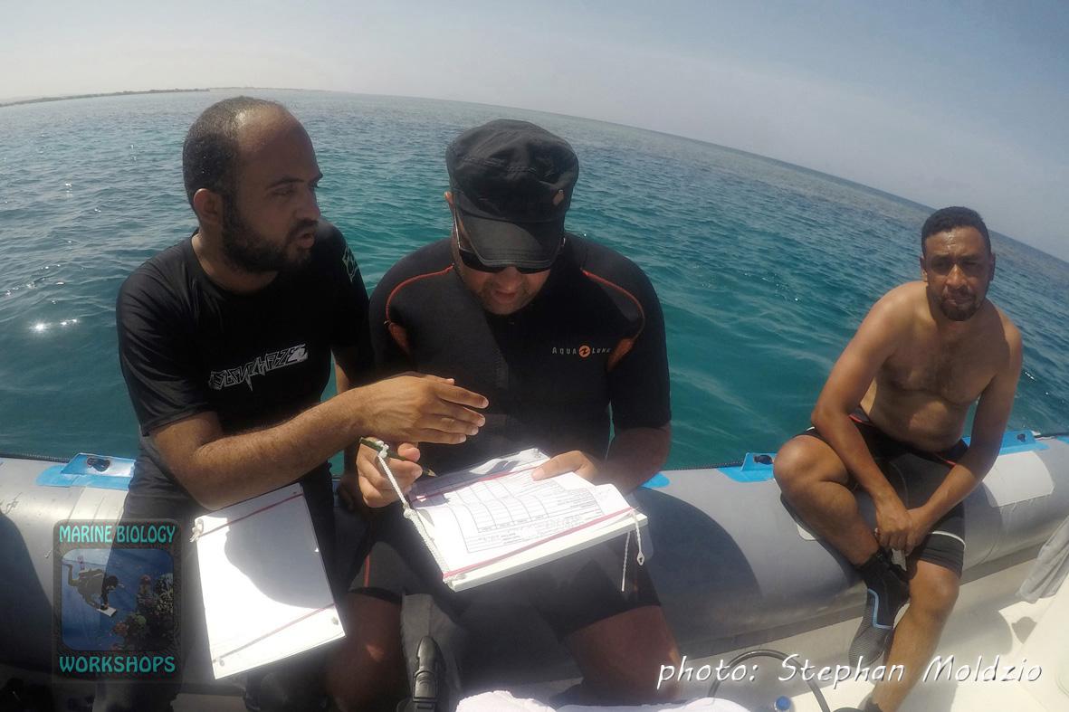 Mahmmoud, Abdallah & Khalid