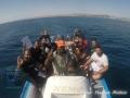 Ready for the Reef check Survey at Wadi Lahami!