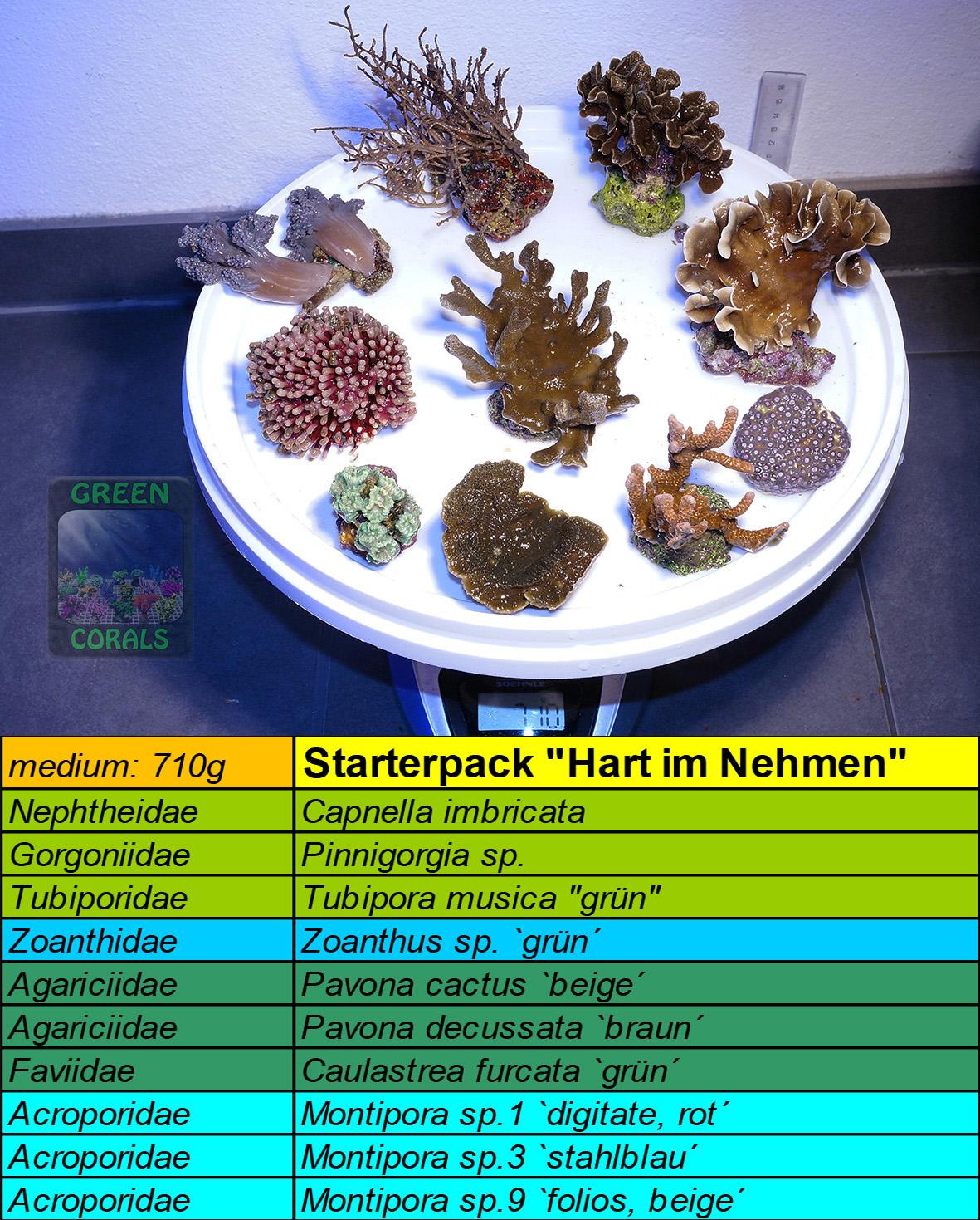 1 Starterpack Hart-im-Nehmen 710g
