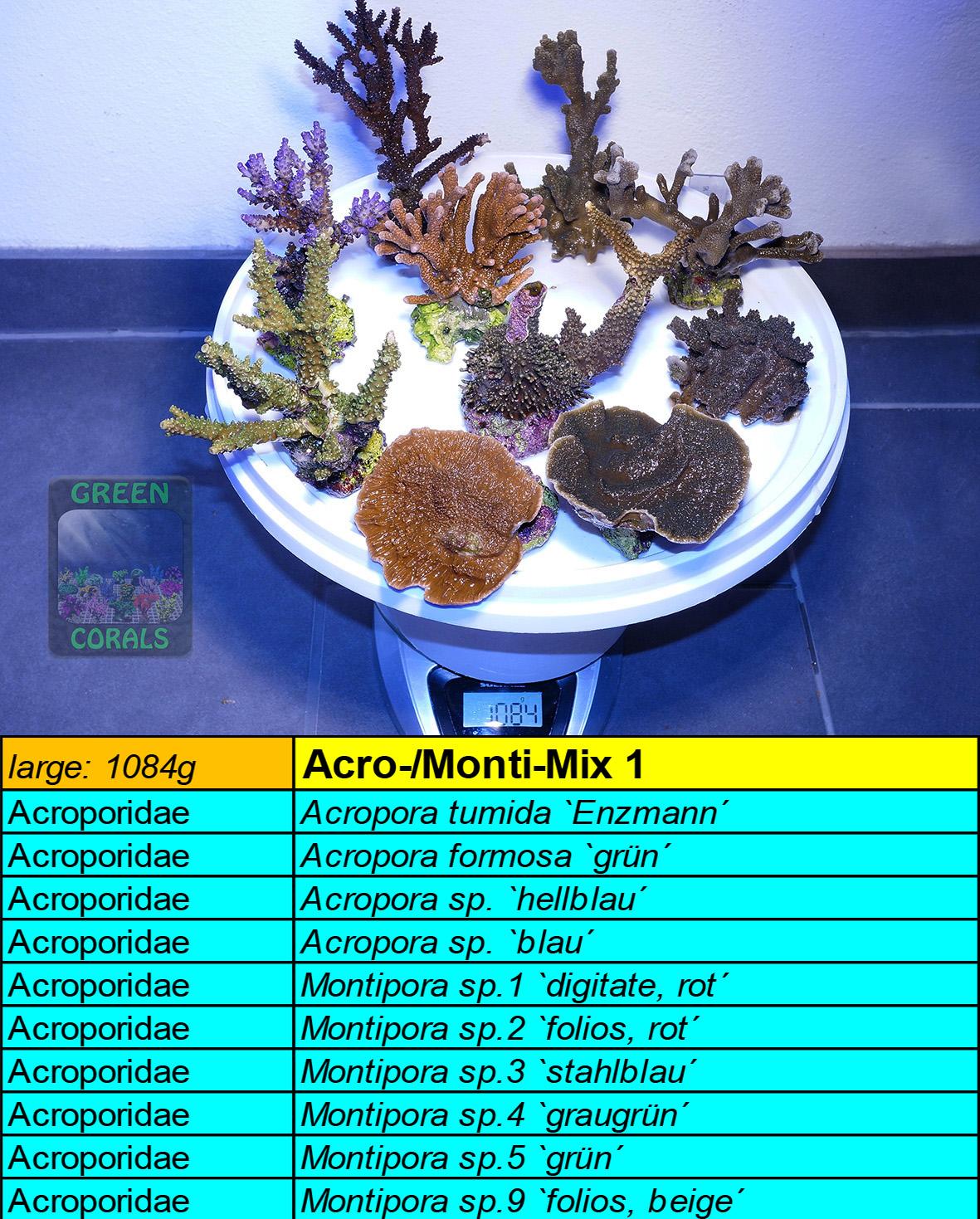 10 Acro-Monti Mix L 1084g