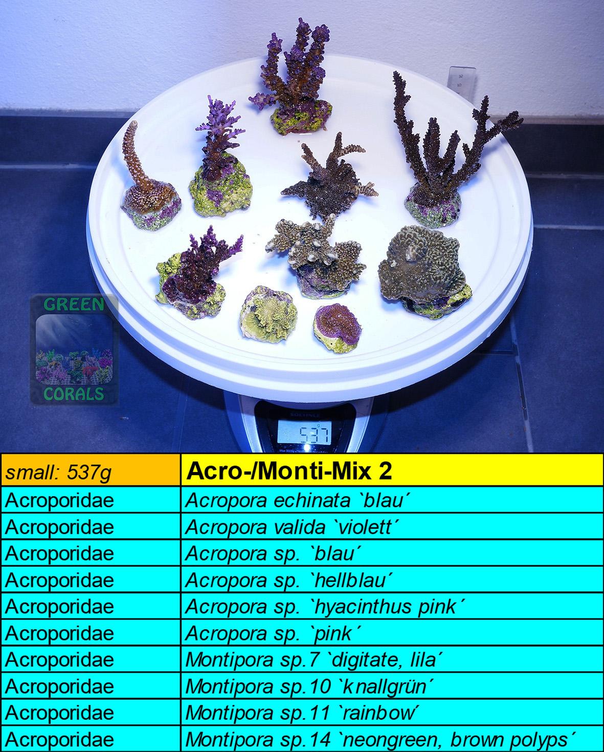 11 Acro-Monti Mix 2 s 537g