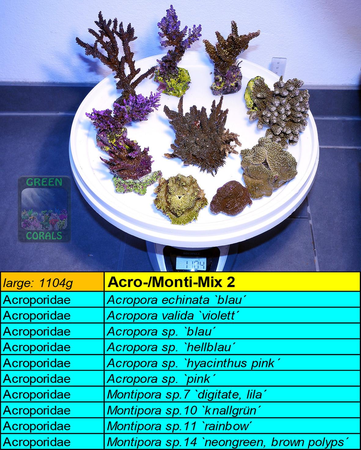 12 Acro-Monti Mix 2 L 1104g