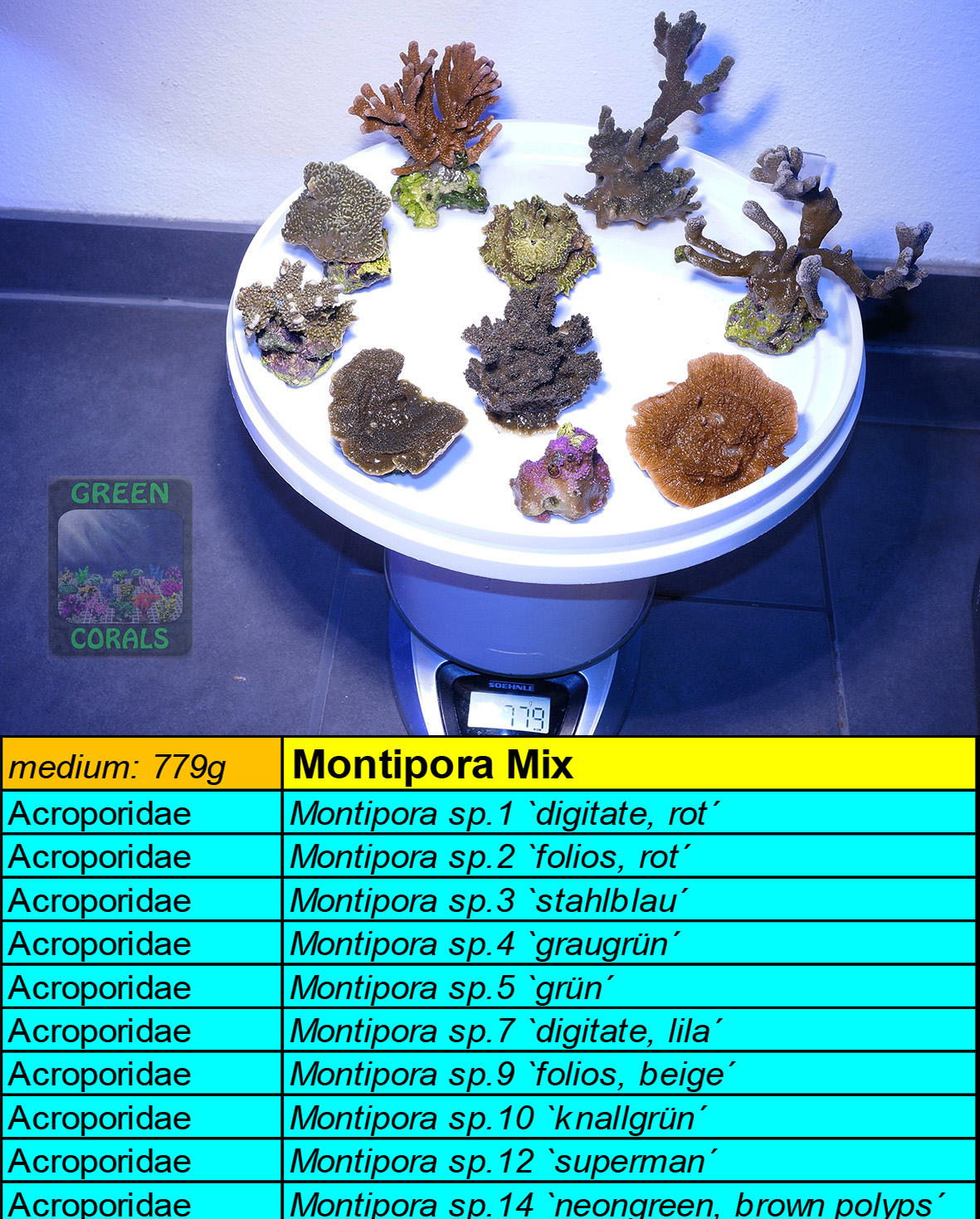 6 Montipora Spezial Mix 779g
