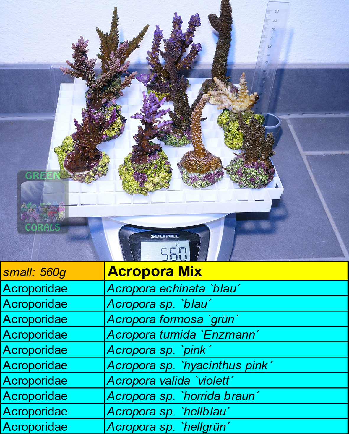 7 Acropora Spezial Mix s 560g