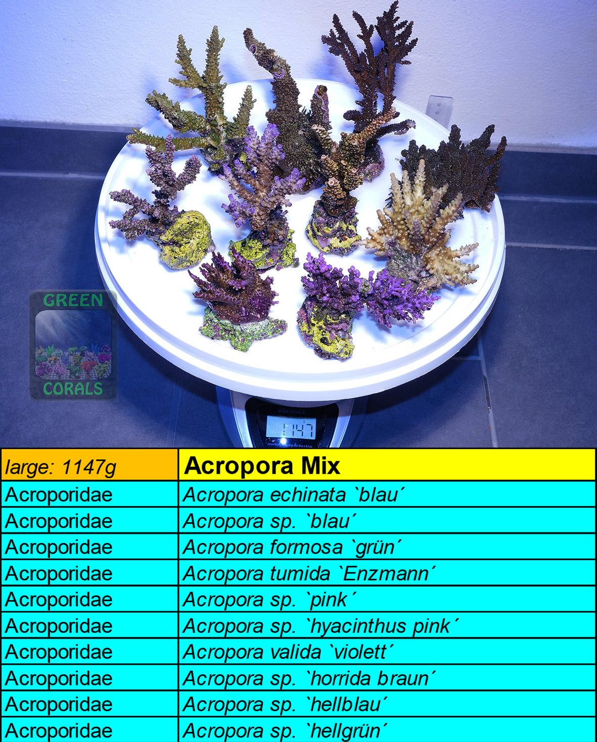 8 Acropora Spezial Mix L 1147g