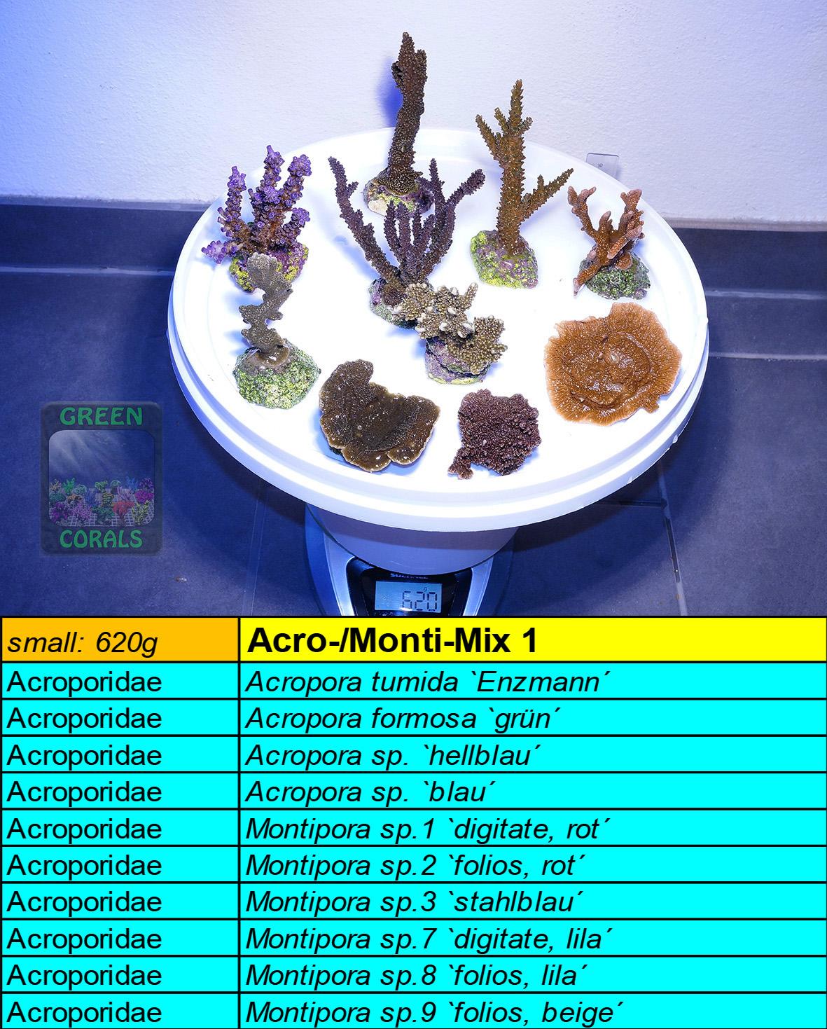 9 Acro-Monti Mix s 620g