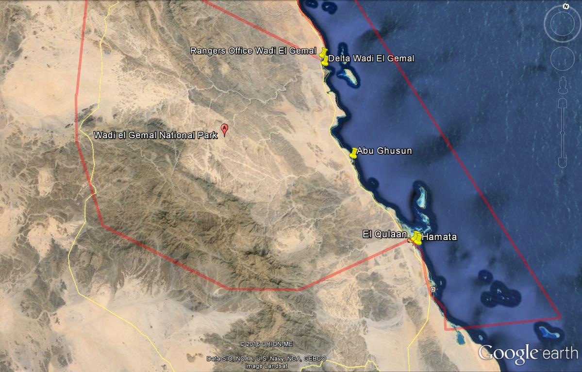 Wadi El Gemal google earth2