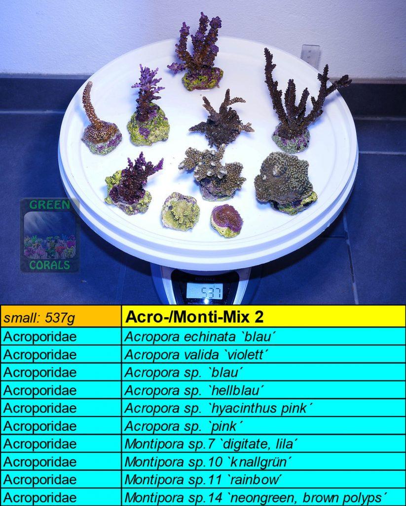 11-acro-monti-mix-2-s-537g