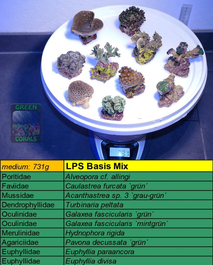 13-lps-basis-mix-731g