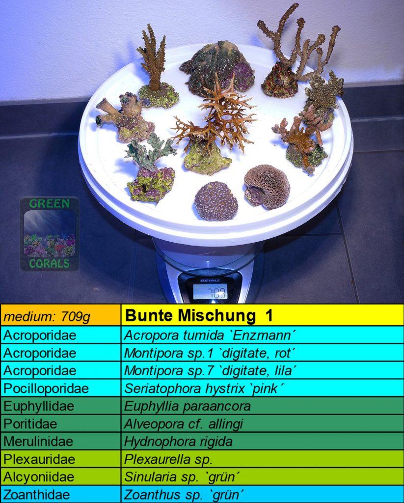 2-bunte-mischung-1-709g