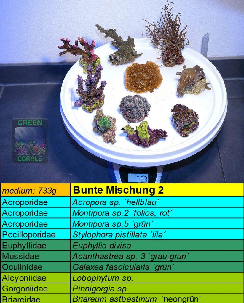 3-bunte-mischung-2-733g