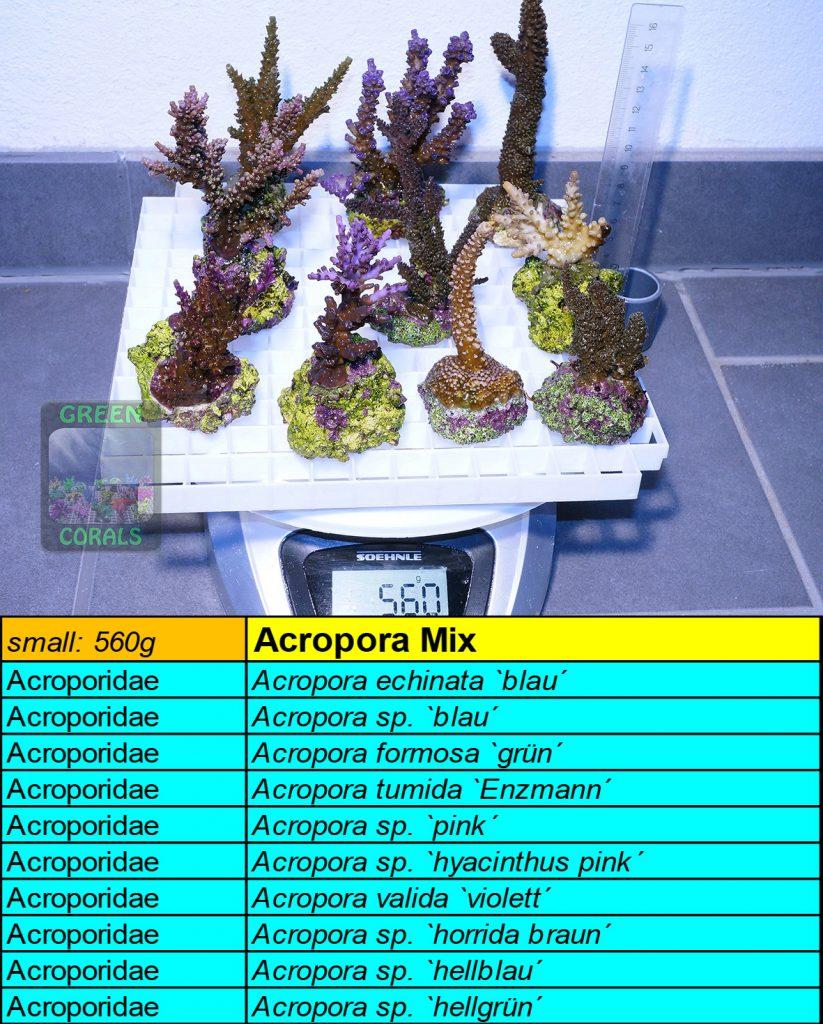 7-acropora-spezial-mix-s-560g