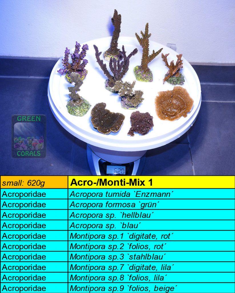 9-acro-monti-mix-s-620g