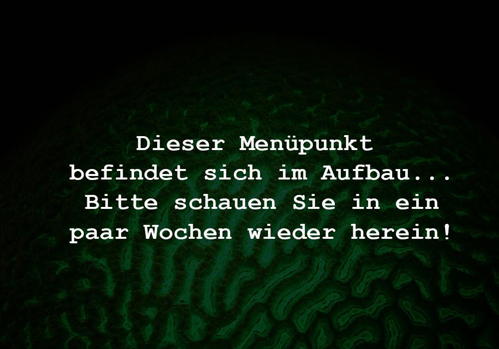 000_Menupunkt_im_Aufbau