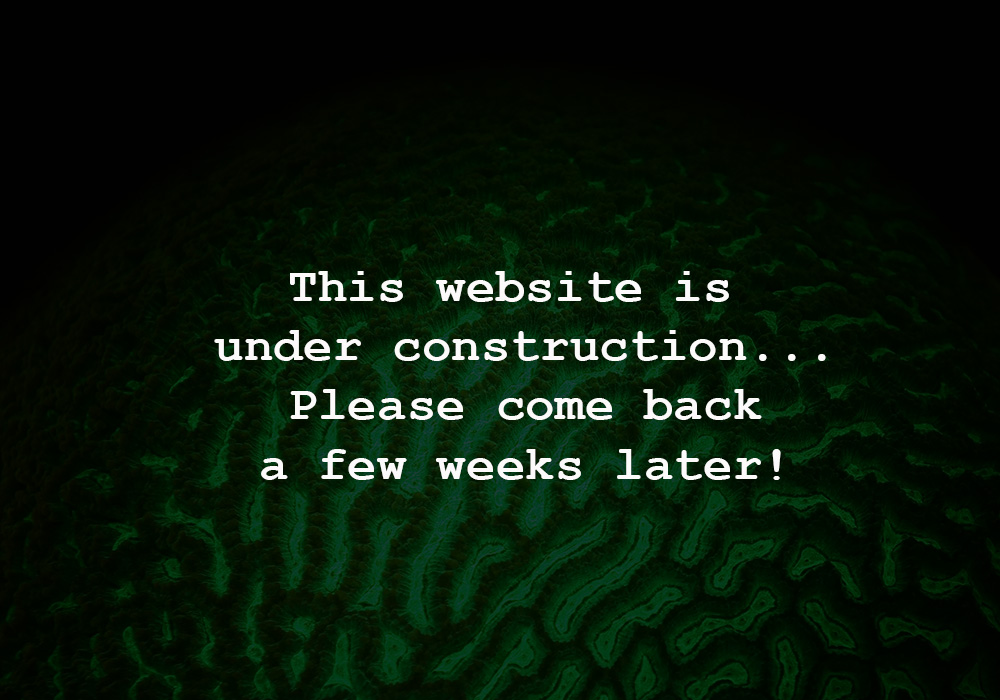 000_website_under_construction