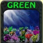 GREEN CORALS Fotoartikel